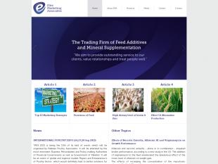 Elite Marketing Associates Web Developement