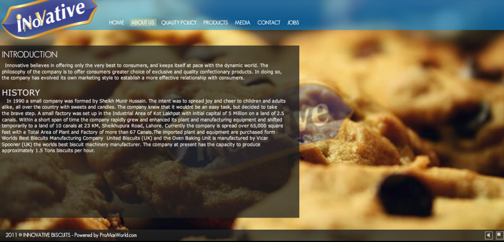 Flash Website Project for Biscuit Company